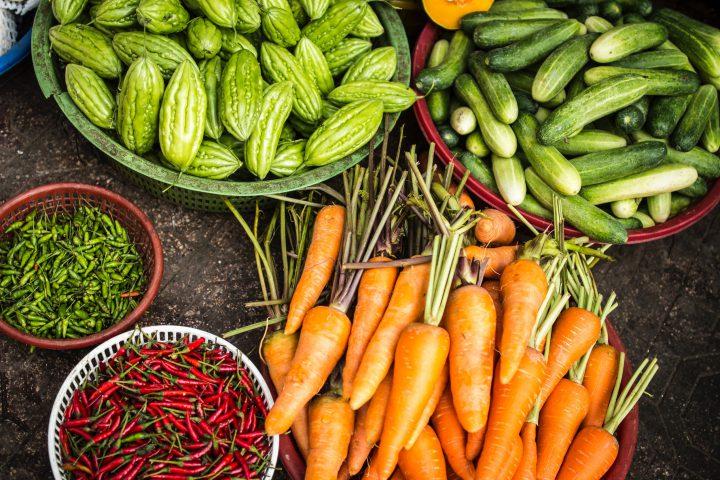 Vegan Diet Review